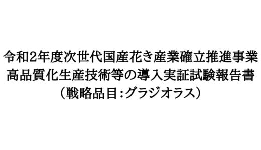 『グラジオラス 電照試験』活動報告
